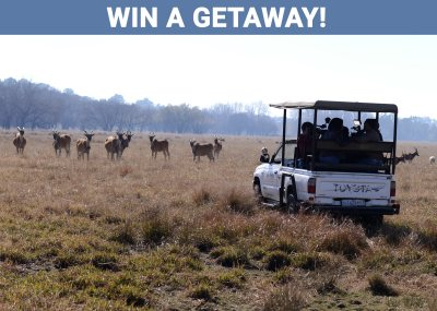 Win A Getaway To Emerald Resort & Casino